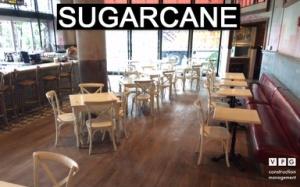 Sugarcane_VPG_384